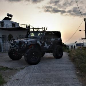 Jeep in camo design (11)
